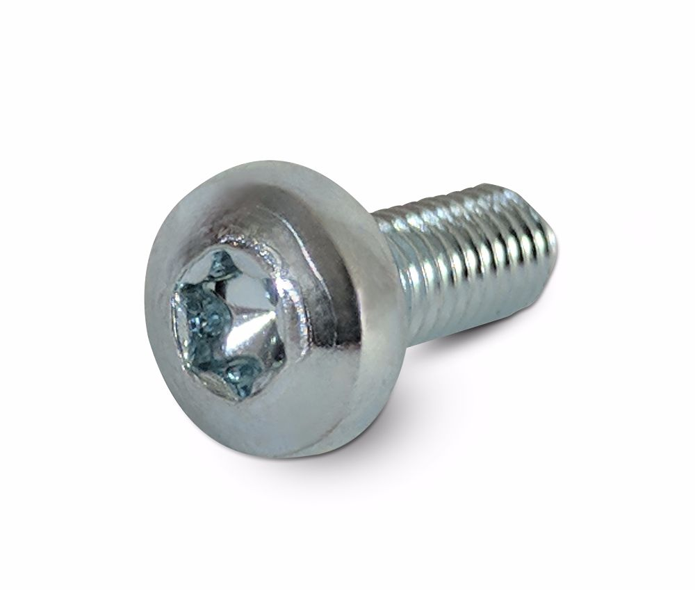M5x55 Torx Pan Head Machine Screw BZP