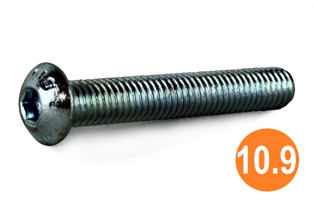 M10x100 Socket Button Head Screw 10.9 BZP
